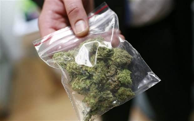 Marijuana In Bag Big Hemp