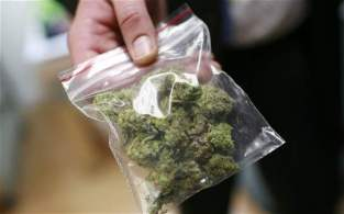 marijuana-in-bag-big-hemp-beach-tv-hbtv